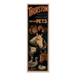 Thurston master magician and his pets poster