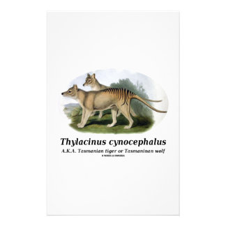 Thylacinus cynocephalus (Tasmanian tiger or wolf) Personalized Stationery