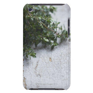 Thyme on old wooden table barely there iPod cases