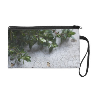 Thyme on old wooden table wristlet clutches