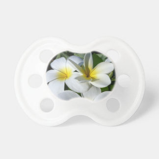 ti plant flowers yellow white pacifiers