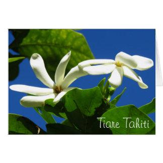 Tiare Tahiti Card