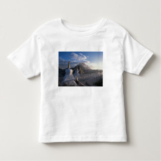 Tibet - Lhasa. Potala at sunrise Toddler T-Shirt