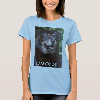 Tibetan Mastiff T.shirt T-Shirt
