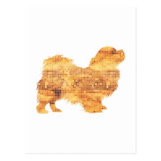 Tibetan Spaniel Postcard
