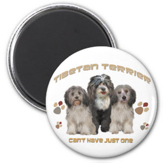 Tibetan Terrier Can t Have Just One Refrigerator Magnet