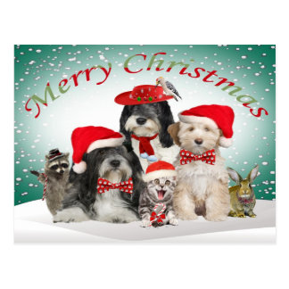 Tibetan Terrier Christmas With Friends Postcards