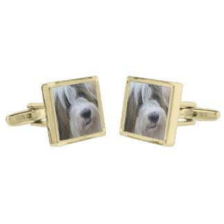Tibetan Terrier Gold Finish Cufflinks