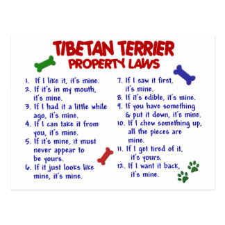 TIBETAN TERRIER Property Laws 2 Postcards