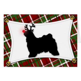 Tibetan Terrier Reindeer Christmas Card