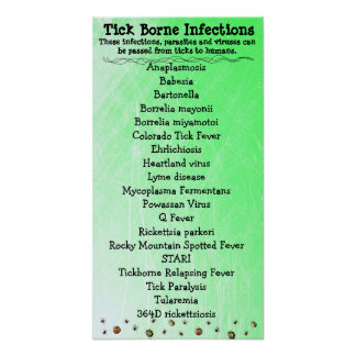 Tick Borne Infection list Lyme Awareness Poster