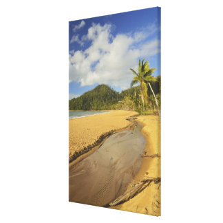 Tidal river at Mission Beach Canvas Print