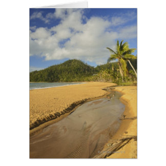 Tidal river at Mission Beach Card