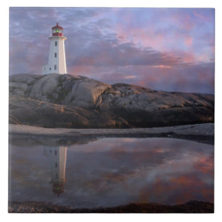 Tide Pool by Lighthouse Tile