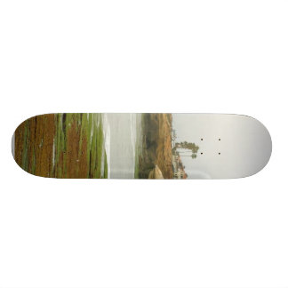 Tidepools Beaches Ocean Morning Skate Boards