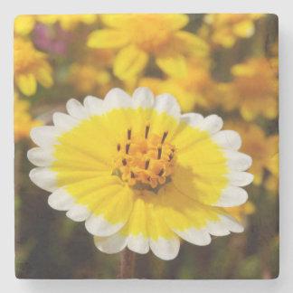Tidy Tip Wildflowers Stone Coaster