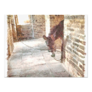 Tied donkey in brick structure photograph