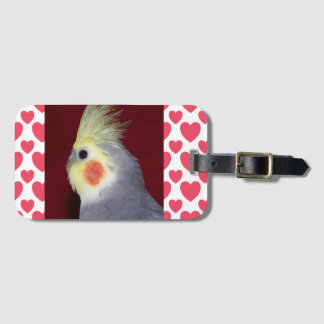 Tiel Tag for Luggage