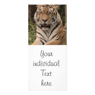 Tiger 0215 customized rack card