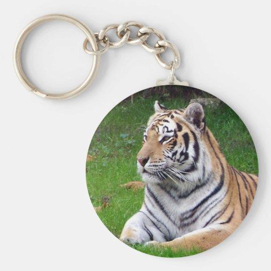 tiger 2 basic round button key ring
