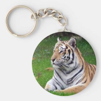 tiger 2 key ring