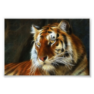 Tiger 3d artworks photo print