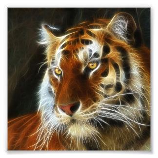Tiger 3d artworks photograph