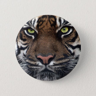 Tiger 6 Cm Round Badge