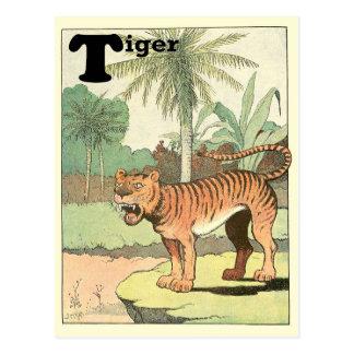 Tiger Alphabet Post Cards