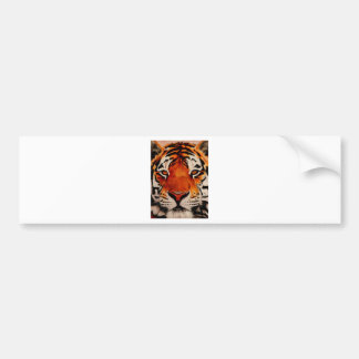 Tiger ( Amur ) Bumper Sticker