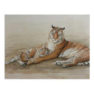 Tiger and Cub Cat Art Postcard