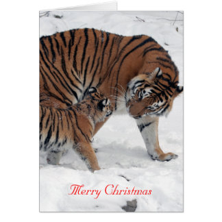Tiger and cub in snow photo custom christmas card