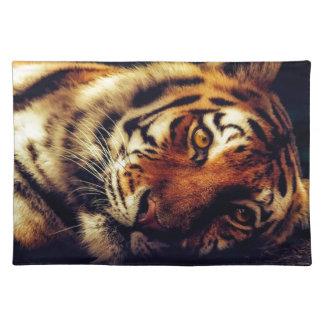 Tiger Animal Wildlife Resting Macro Closeup Placemat