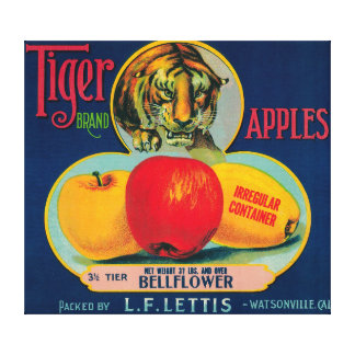 Tiger Apple Crate LabelWatsonville, CA Canvas Print