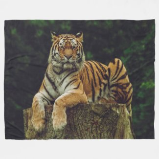 TIGER at REST Fleece Blanket