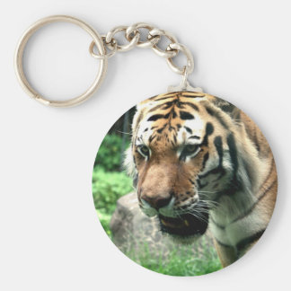 Tiger at the Bronx Zoo Keychain