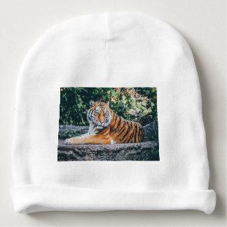 Tiger Baby Beanie