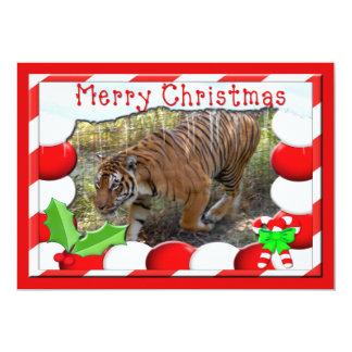 Tiger Bengali-c-150 copy 13 Cm X 18 Cm Invitation Card