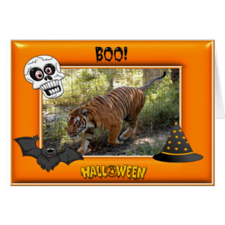 Tiger Bengali Halloween Cards Fancy