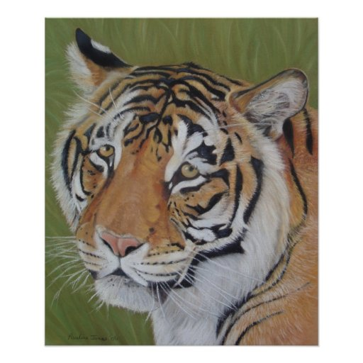 tiger big cat wildlife realist animal art poster