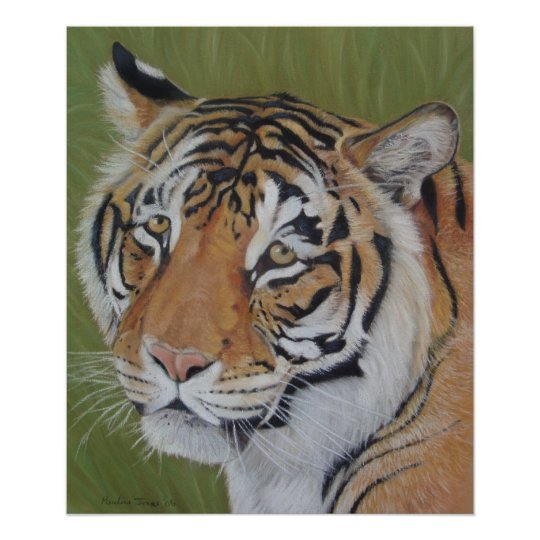 tiger big cat wildlife realist animal art poster