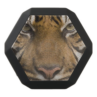 tiger boom bot rex speaker black