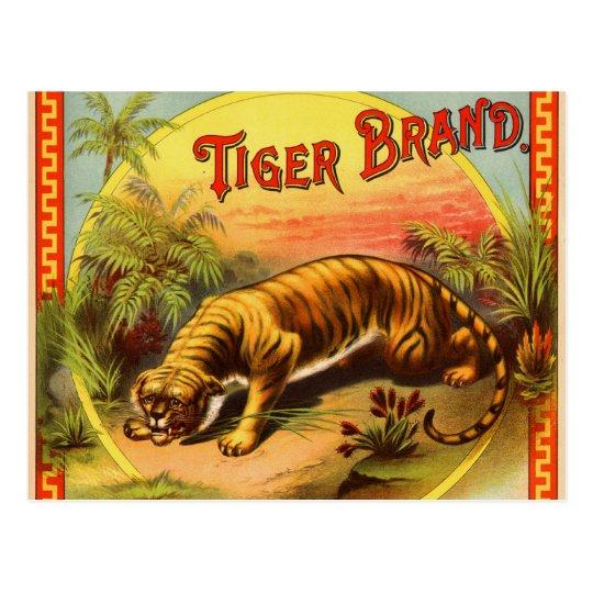Tiger Brand 1900 Postcard