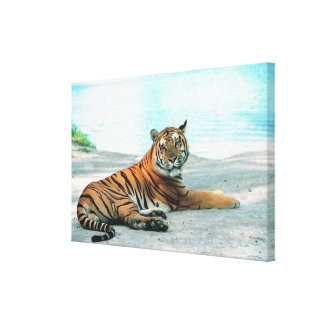 Tiger by river canvas print