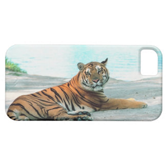 Tiger by river case for the iPhone 5