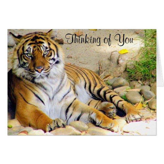 Tiger_ Card
