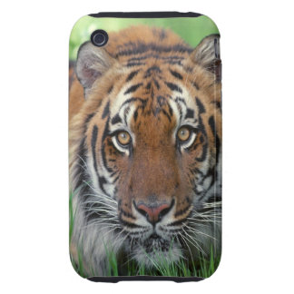 Tiger Tough iPhone 3 Cover