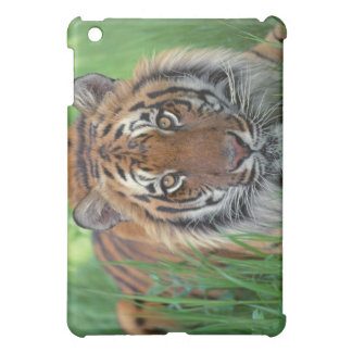 Tiger Case iPad Mini Case