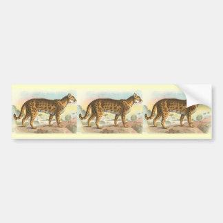 Tiger-Cat Bumper Sticker