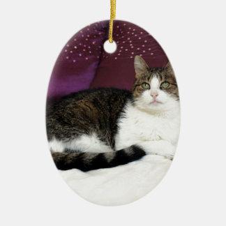 Tiger Cat Christmas Ornament
